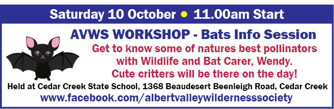 AVWS WORKSHOP - Bats Info Session