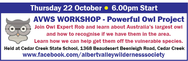 AVWS- Powerful Owl Project - 22 Oct