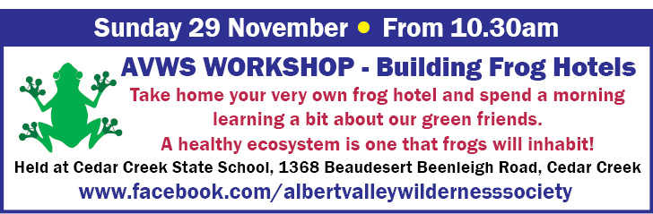 AVWS- Building Frog Hotels -29Nov